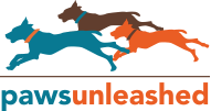 Paws Unleashed: Woodbury, MN dog training & dog boarding